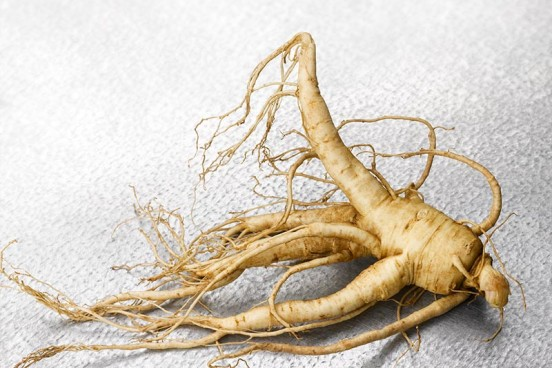 Our Works - Ginseng 17
