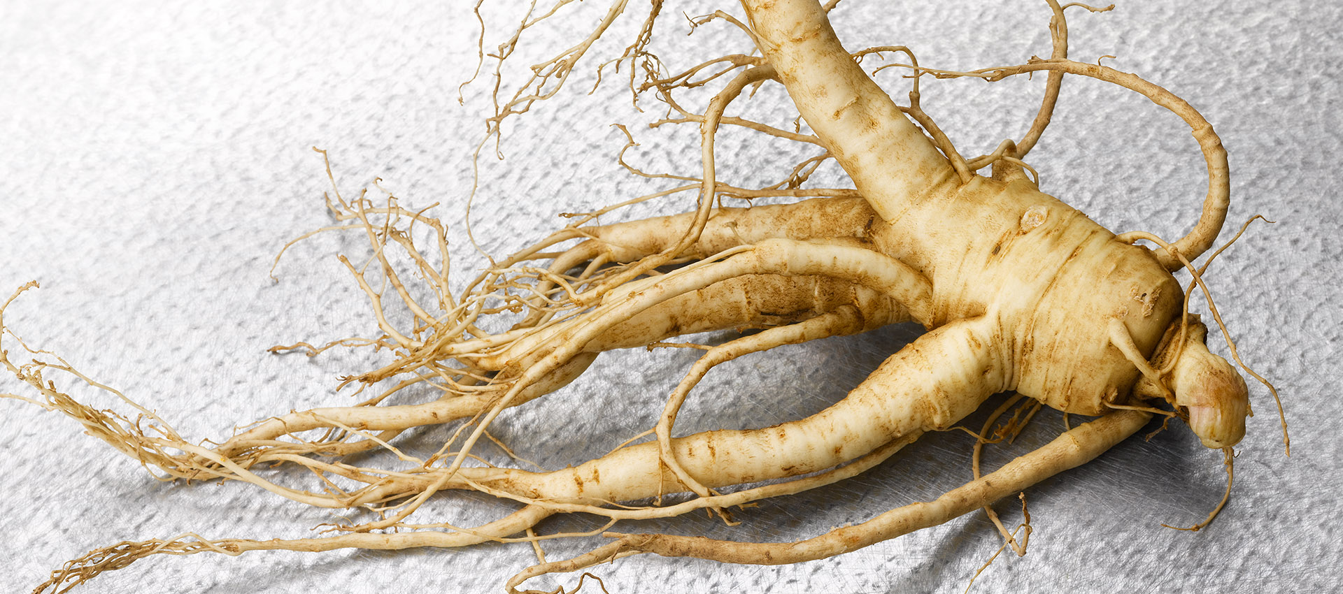 wisconsin ginseng roots