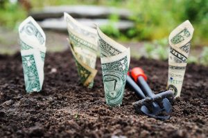 Raising Money for Your Farm Through Value-Added Producer Grants Webinar